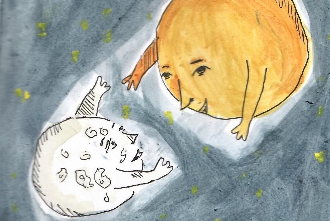 Illusztráció: Torma Fruzsina (12)