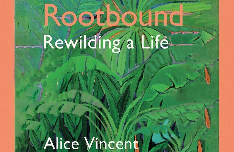 A Rootbound című könyv rövid idő alatt nagyon népszerű lett