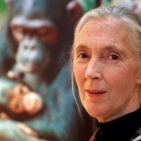 Újra Magyarországon a csodálatos brit hölgy