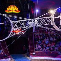 Ma éjjel óriási cirkusz lesz!