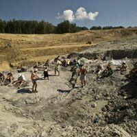 Újabb csontmaradványok kerültek elő Iharkúton