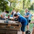 Pünkösdkor indul a Pagony Projekt