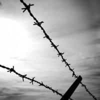 A munkaszolgálat és a halálmenetek a Holokauszt Emlékközpont novemberi témái