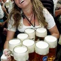 Lökd ide a sört!