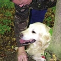 Kutya találta meg a világ legdrágábbját