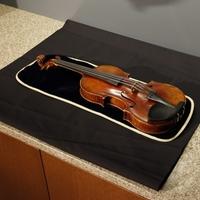 Súlyos büntetés a hegedűlopásért