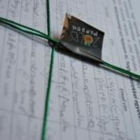 100.000 ember lobbizik a Zöld Pardonért
