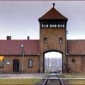 Magyar kincseket találtak Auschwitzban