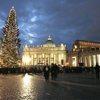 Titkos helyen van a szent térre kerülő karácsonyfa