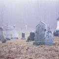 Húsz lopott hullát találtak a zseni házában