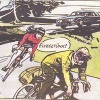 Magyar karikatúrát vettek 750 ezer forintért