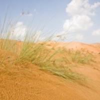 Ősi várost találtak a homok alatt