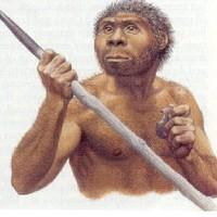 Hiba lebecsülni a homo erectust