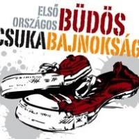 Július 9-én startol az új zenei fesztivál Balatonon - addig már ne moss lábat!