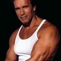 Schwarzenegger több millió dollárt bukott