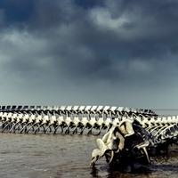 Óriáskígyó a francia folyóban