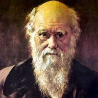 Meglelték Darwin madártojását