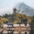 K, mint Korea