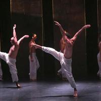 A holokauszt táncos emlékirata