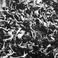 Küzdenek a holokauszt tagadása ellen