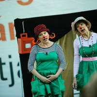 Elképesztő cirkusz a Hajógyári-szigeten!