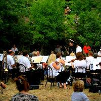 Sikeres koncertek a fák alatt