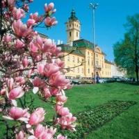 Csodára készülnek Szegeden