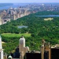Összefognak New York lakói