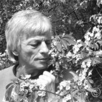 Negyven éve hunyt el Nagy László