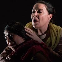 Erőszak az operában