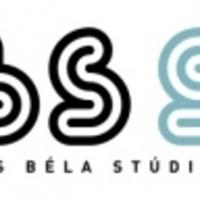 Ellenőrzött szabadság - megnyílt a BBS 50 kiállítás