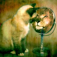 Nézzünk tükörbe!