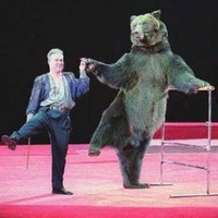 """""""Az állatok cirkuszi szerepeltetése kimeríti a kegyetlenség fogalmát"""""""