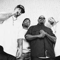 Manu Chao és Cypress Hill a VOLT Fesztiválon