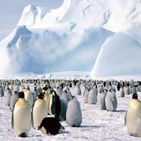 Egy élhető Antarktisz emlékei
