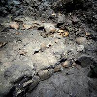 Félelmetes kincset találtak Mexikóvárosban