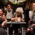 A temesvári színház vendége lesz a lengyel drámaíró