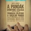 Utazz pandákkal!