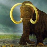 Fél lépésnyire a klónozott mamuttól