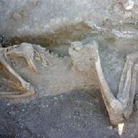 Ötezer éves csontvázak a Leégett Városban