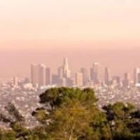 Los Angelesben szeretik a magyarokat