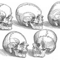 Adjátok vissza a koponyáimat!