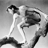 30 éve halt meg Tarzan