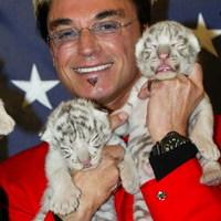 Öt új tigriskölyök lehet a gyógyszer