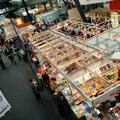 Tízezreket csábítottak a Millenáris parkba a könyvek