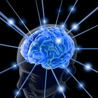 A zene növeszti az agyat!