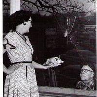 Raymond Chandler 50 évet várt feleségére