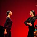 Vígadj flamencoval!