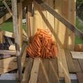 Robbanó sárgarépát tenyésztettek ki Svédországban