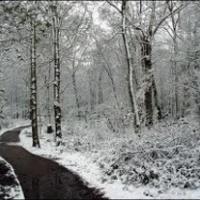 Télen legalább vágnak disznót
